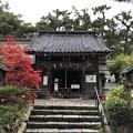 Photos: 11月_諏訪神社 3