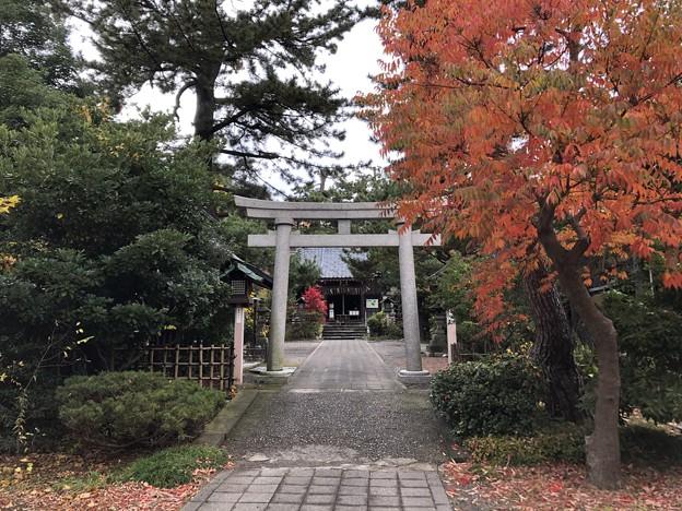 11月_諏訪神社 2