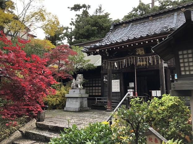 Photos: 11月_諏訪神社 4
