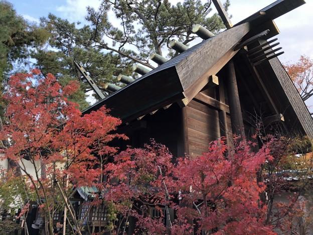 11月_白山神社 3