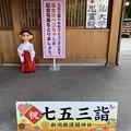Photos: 11月_新潟縣護國神社 5