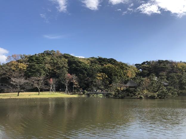 11月_三溪園 h