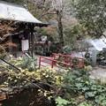 11月_井の頭弁財天 3