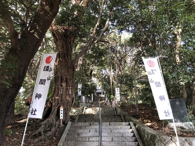 12月_浅間神社 1