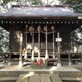 Photos: 12月_浅間神社 2