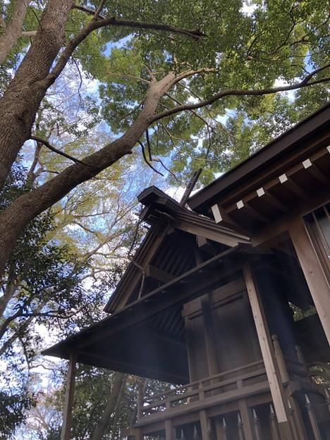12月_浅間神社 3