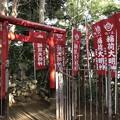 Photos: 12月_浅間神社 4