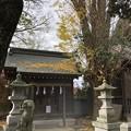 Photos: 12月_東水元香取神社 3