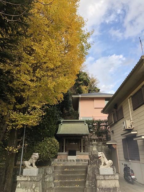 Photos: 12月_諏訪神社 1