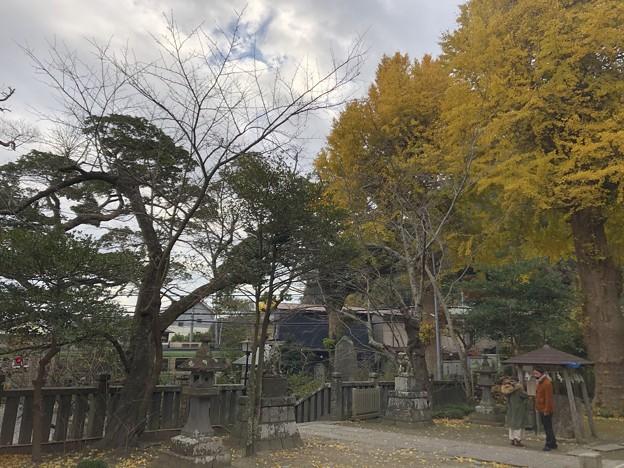 12月_御霊神社 6