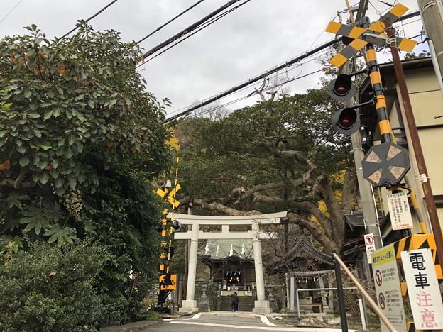 12月_御霊神社 1