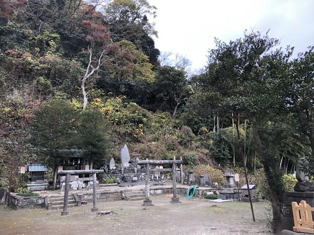 12月_御霊神社 4