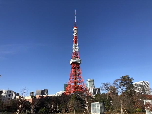 12月_東京タワー 3