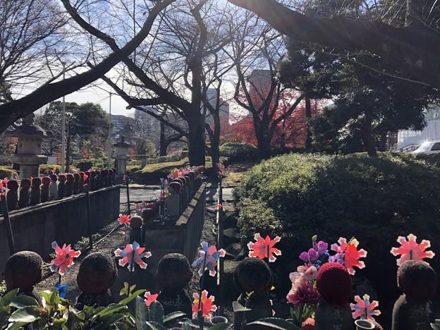 12月_増上寺 6