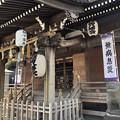 Photos: 12月_杉田八幡宮 2