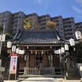 Photos: 12月_杉田八幡宮 1