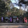 Photos: 1月_諏訪神社 2