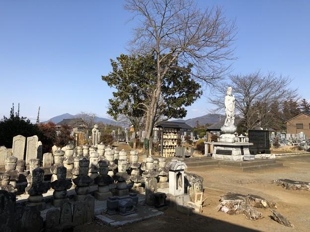 2月_西方寺 4