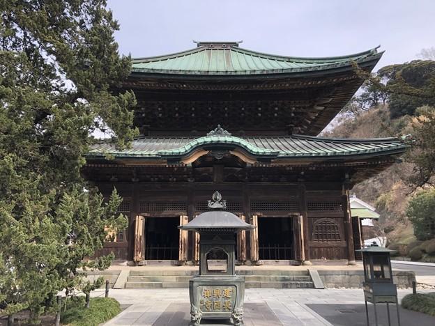 2月_建長寺 5