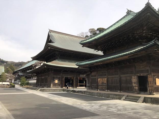 2月_建長寺 8