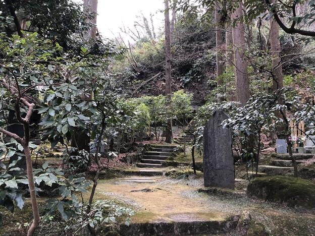 2月_東慶寺 8