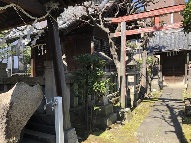 2月_野見宿禰神社 3
