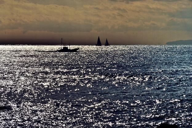 煌めきの海。