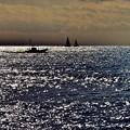 Photos: 煌めきの海。