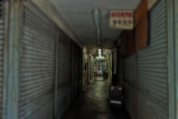 Photos: 築地場外を歩く  *販売店*