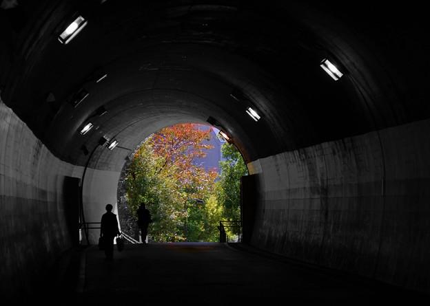 横浜さんぽ 東急東横線旧高島山トンネル・神奈川区台町