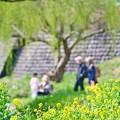 三世代の春。