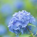 夢旅人~Blue Dream