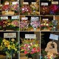 1127-草なぎ剛のはっぴょう会-お花