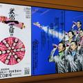Photos: 2020-10-09-獣道一直線!!!-案内
