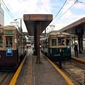 広島電鉄 650形 750形 広島市南区松原町 広島駅 電停 2016年11月29日