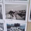 写真: しののめ れんこんまつり 写真の展示 広島市南区東雲本町2丁目 東雲本町公園 2010年8月22日