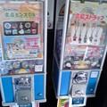 石川玩具 広島ビンズDX 広島ストラップ 広島市中区基町 広島城 2010年9月16日