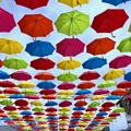 Photos: マツダスタジアム10週年イベント 傘まつり 広島市南区西蟹屋2丁目 2018年5月27日
