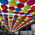 Photos: MAZDA Zoom-Zoom stadium Hiroshima マツダスタジアム10週年イベント umbrella sky project 傘まつり 広島市南区西蟹屋2丁目 2018年5月27日