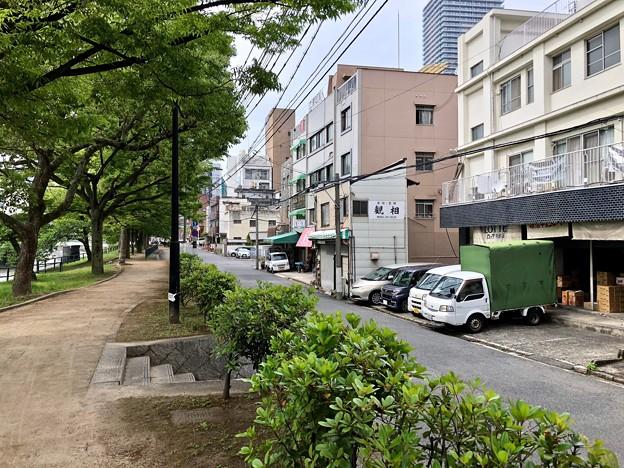 猿猴川左岸遊歩道 広島市南区西蟹屋1丁目 2018年5月31日