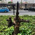 津田式ポンプ製作所 手押しポンプ 津田式ケーボー号 広島市南区松原町 2018年7月1日