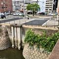 写真: 荒神橋 左岸 広島市南区猿猴橋町 2018年7月28日