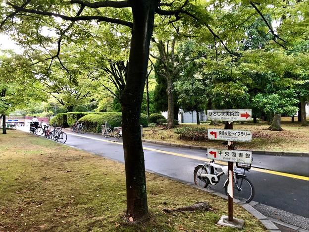 広島市中央公園 ひろしま美術館前 広島市中区基町 2018年8月31日