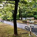 Photos: 広島市中央公園 ひろしま美術館前 広島市中区基町 2018年8月31日