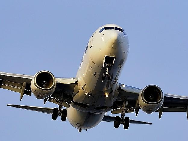 ANA機着陸寸前 3