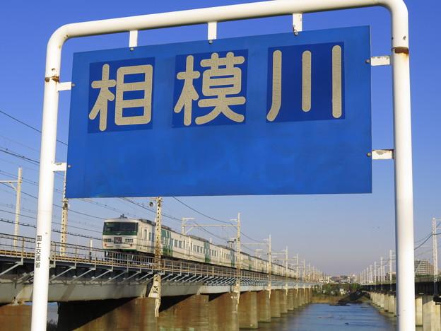 相模川で遊んできたよ。