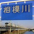 Photos: 相模川で遊んできたよ。