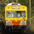 黄色い電車暁に映える