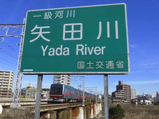 やだねったら、矢田ね。