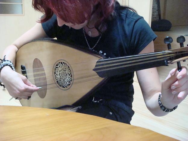 リュートを奏でるヒト